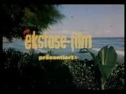 vintage 70s german – Palmen, Meer und nasse Grotten (feature) – cc79
