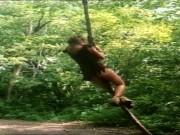 Tarzan X (TOTAL EDITION HD)